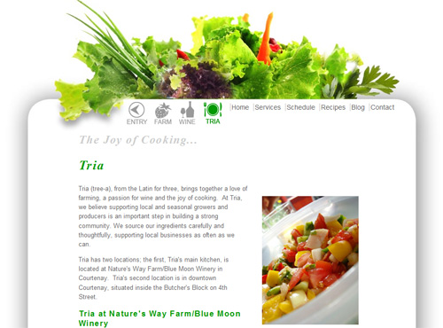 Link to Tria Culinary studio website design